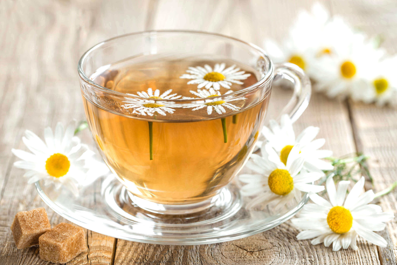 Ekinezya Çayı ile 1 Haftada 4 Kilo Vermek Mümkün