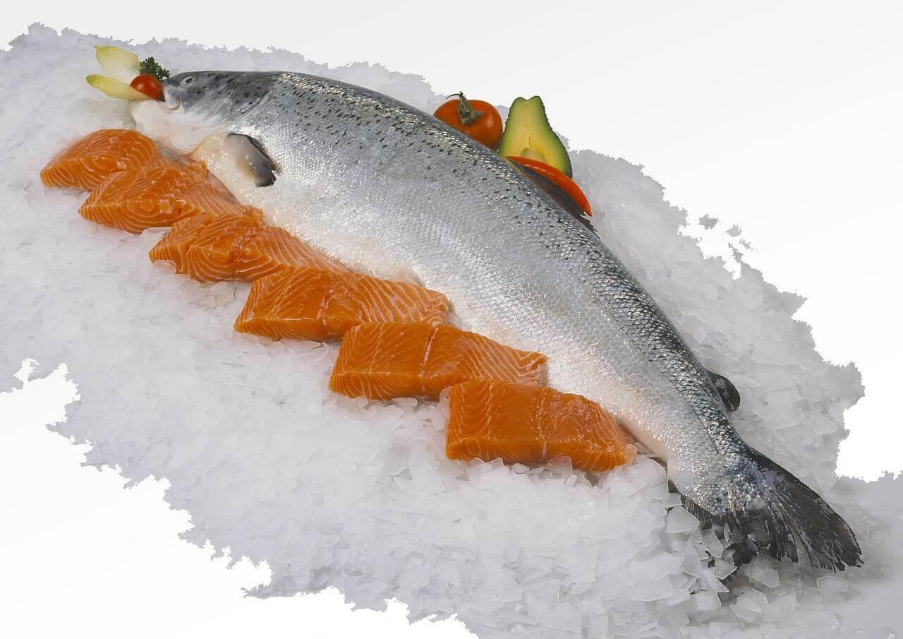 Kilo vermek ve sağlığı geliştirmek balık diyetine yardımcı olacaktır