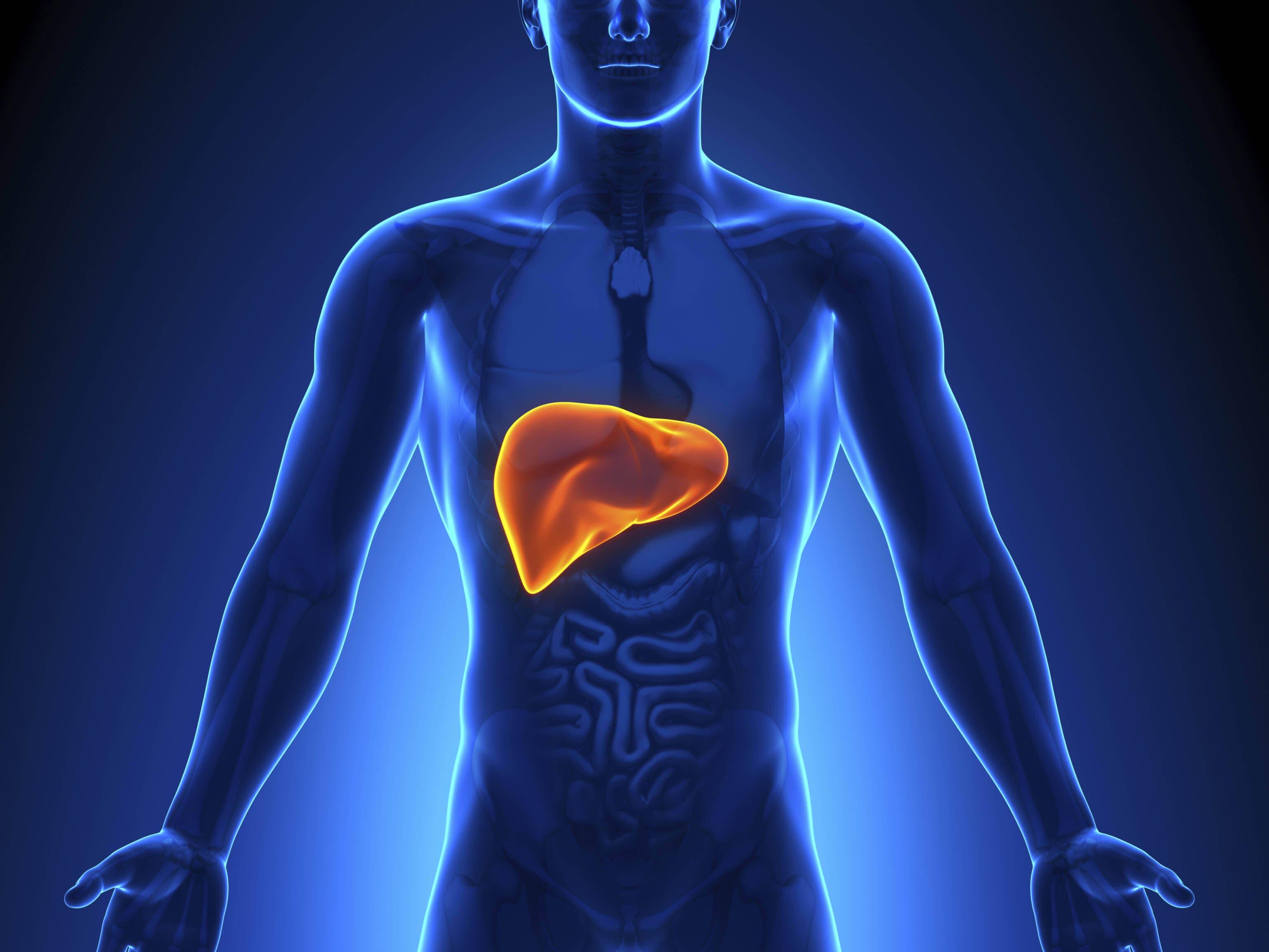 Karaciğer Temizleme Kürü İçin 4 Tarif
