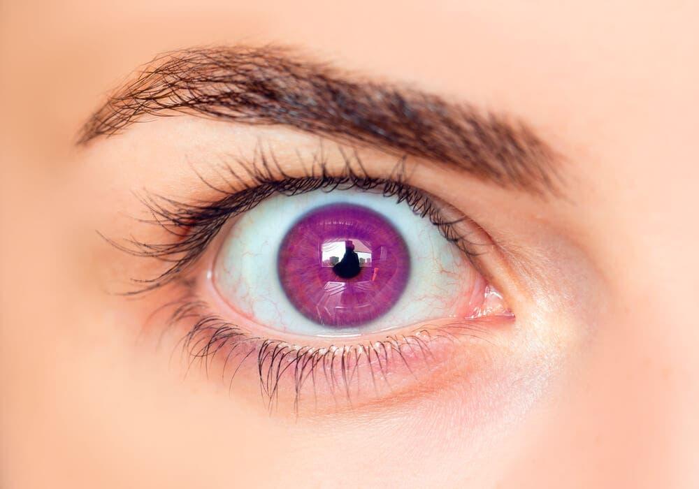 Göz Renkleri Nasıl Oluşur Neye Göre Değişir Ayşe Tolga Iyi Yaşam