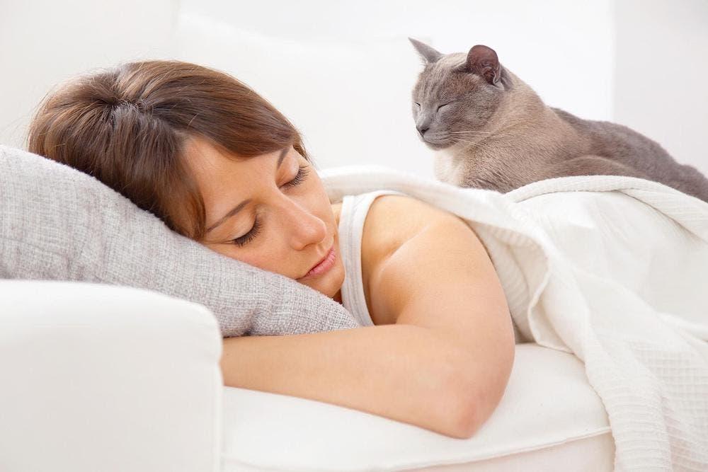 Kedinizin sizinle uyumasına izin vermeli misiniz?