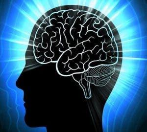Beynimizin Çalışma Sistemi