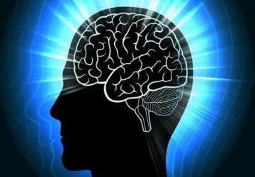 berrak rüyada beyin